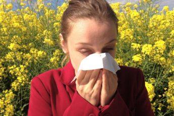 7 натуральных средств от сезонной аллергии