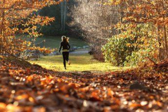 Золотые правила здорового образа жизни