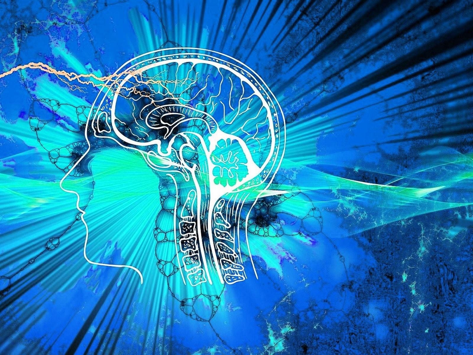 нейробика тренировка