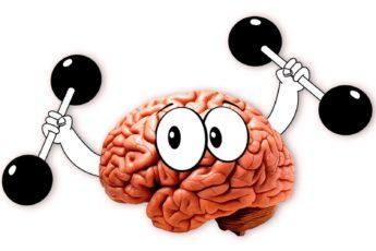 Упражнения для мозга или гимнастика ума для улучшения концентрации внимания и памяти