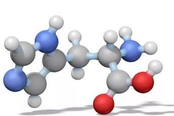 аминокислоты для чего нужны в спорте