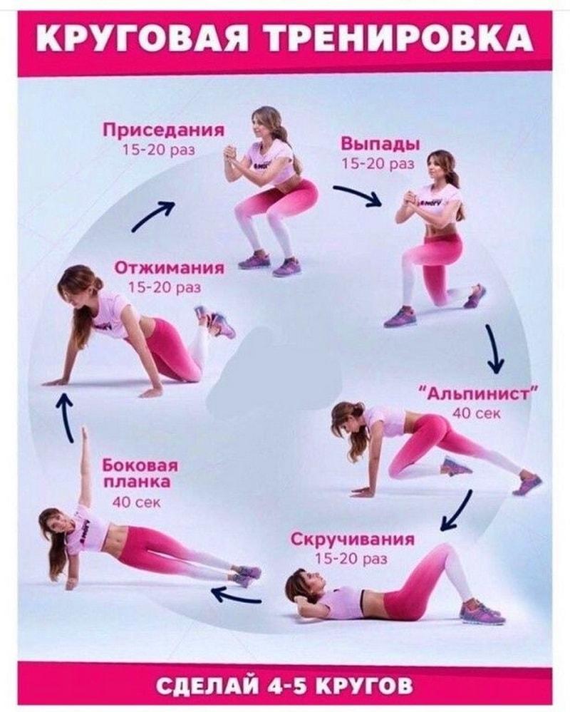 круговая тренировка на все группы мышц